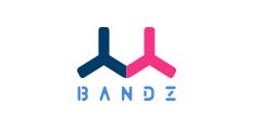 BANDZ班队长