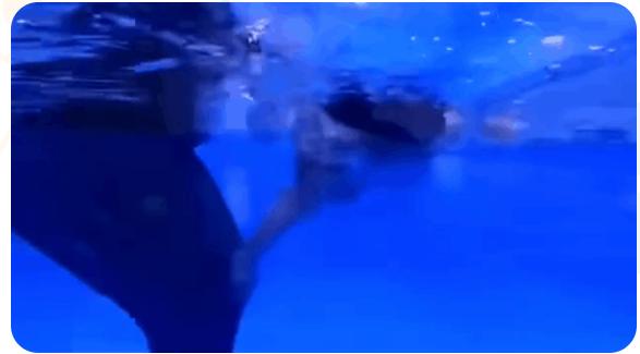 鯨魚堡20200110加盟店風采展示