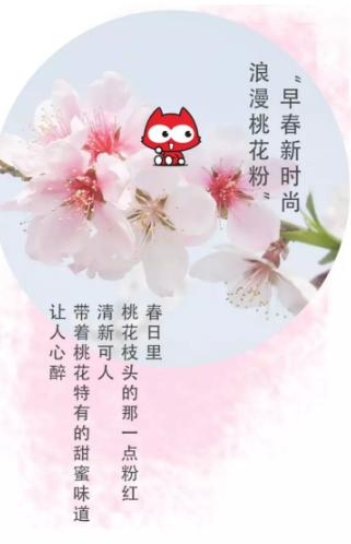淘淘貓|2020春季上新,鼠你最美!