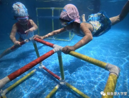 鲸鱼堡水育课程:小鲸鱼班(49-72个月)技能拓展 畅游水世界!